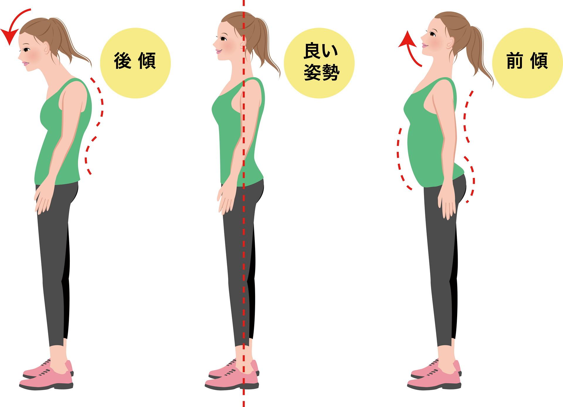 姿勢の画像